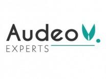 Audeo pour site